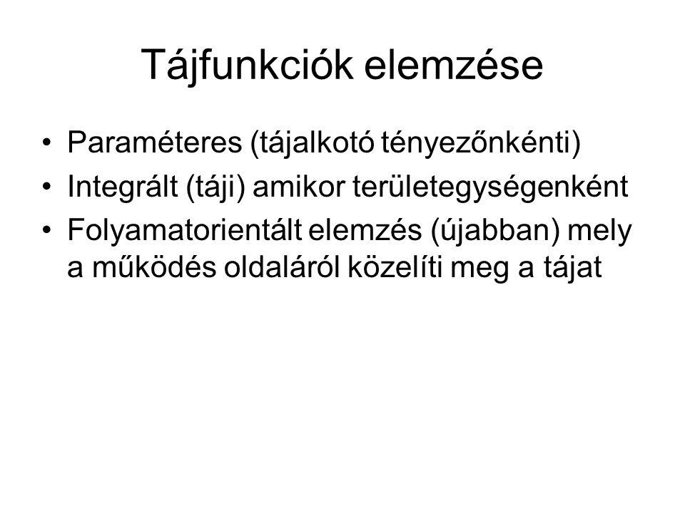 Tájfunkciók elemzése Paraméteres (tájalkotó tényezőnkénti)