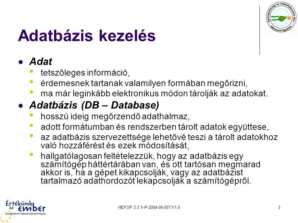Adatbázis kezelés Adat Adatbázis (DB – Database)