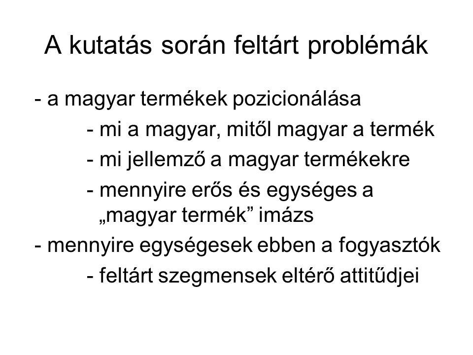 A kutatás során feltárt problémák