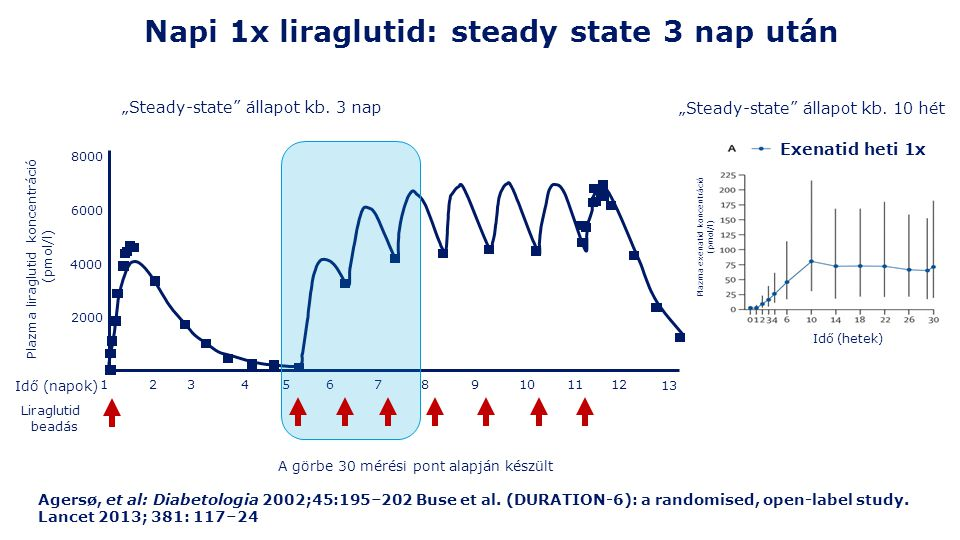 Napi 1x liraglutid: steady state 3 nap után