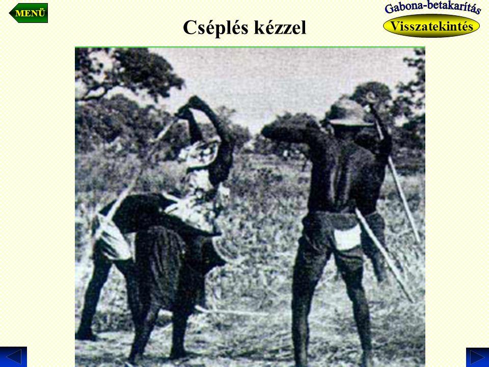 MENÜ Cséplés kézzel Gabona-betakarítás Visszatekintés .