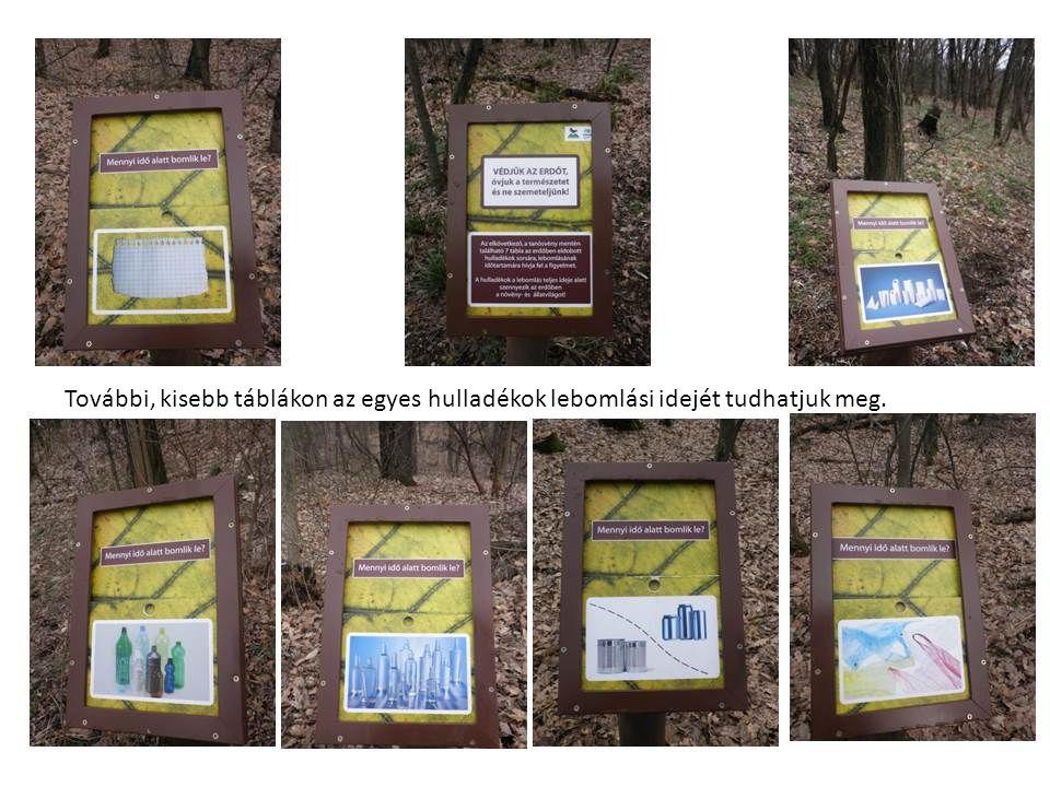 További, kisebb táblákon az egyes hulladékok lebomlási idejét tudhatjuk meg.