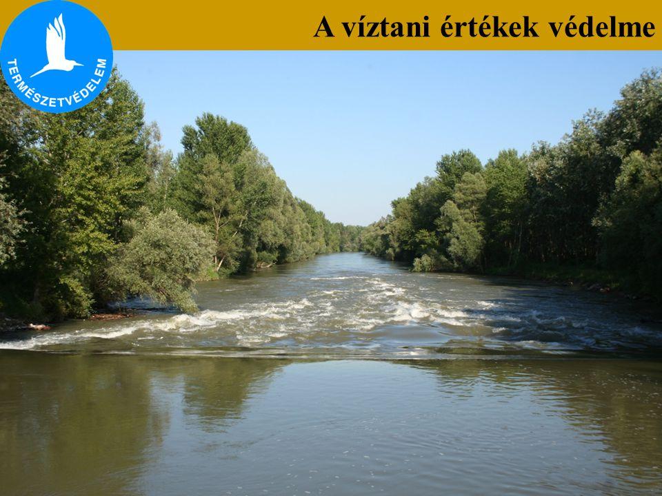 A víztani értékek védelme