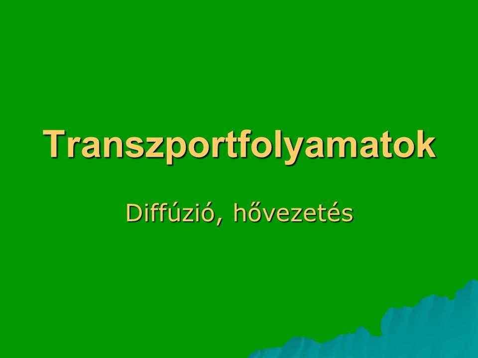 Transzportfolyamatok
