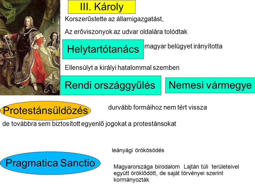 III. Károly Helytartótanács Rendi országgyűlés Nemesi vármegye