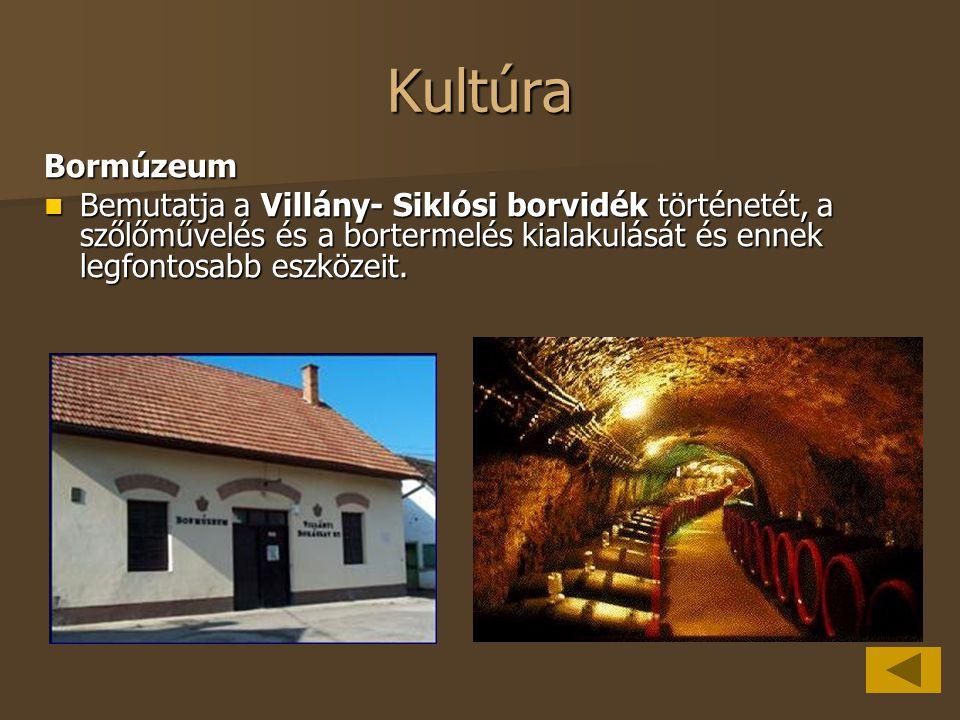Kultúra Bormúzeum.