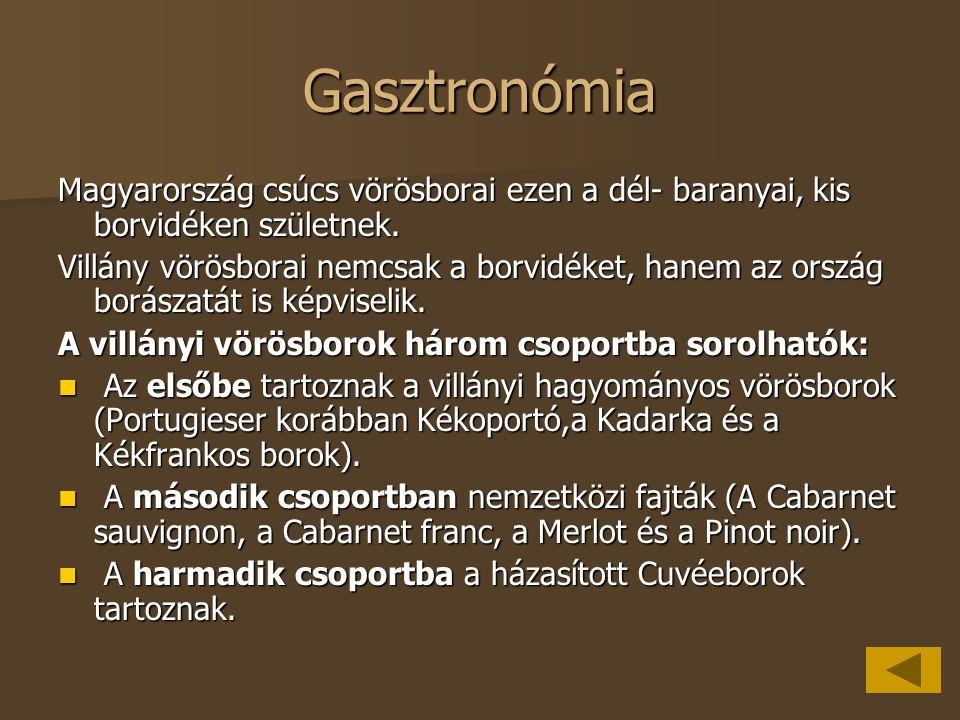 Gasztronómia Magyarország csúcs vörösborai ezen a dél- baranyai, kis borvidéken születnek.