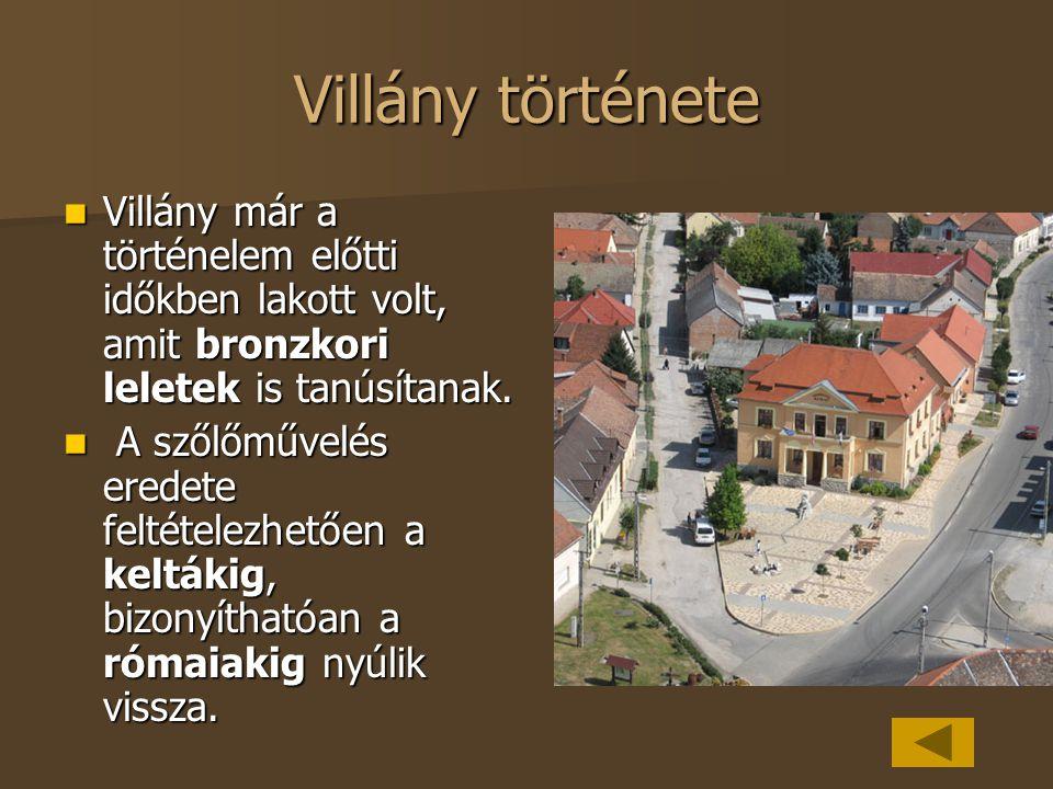 Villány története Villány már a történelem előtti időkben lakott volt, amit bronzkori leletek is tanúsítanak.