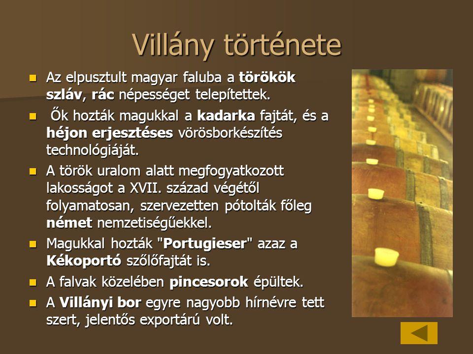 Villány története Az elpusztult magyar faluba a törökök szláv, rác népességet telepítettek.