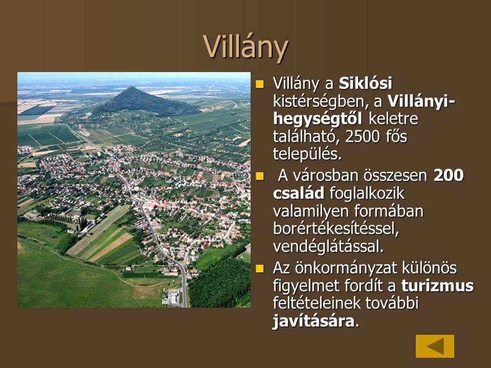 Villány Villány a Siklósi kistérségben, a Villányi-hegységtől keletre található, 2500 fős település.