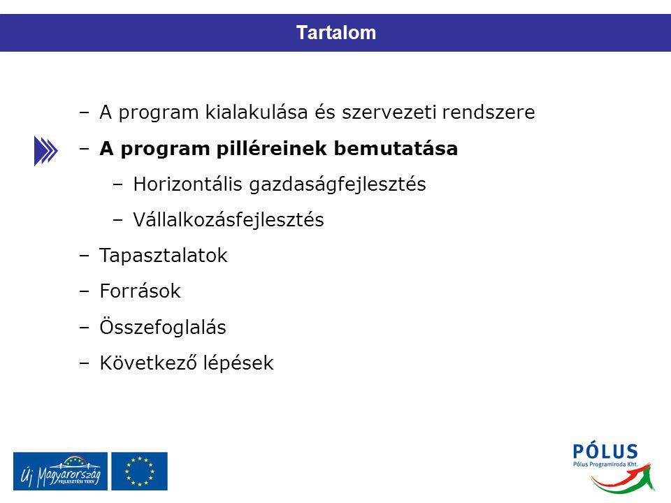 A program kialakulása és szervezeti rendszere