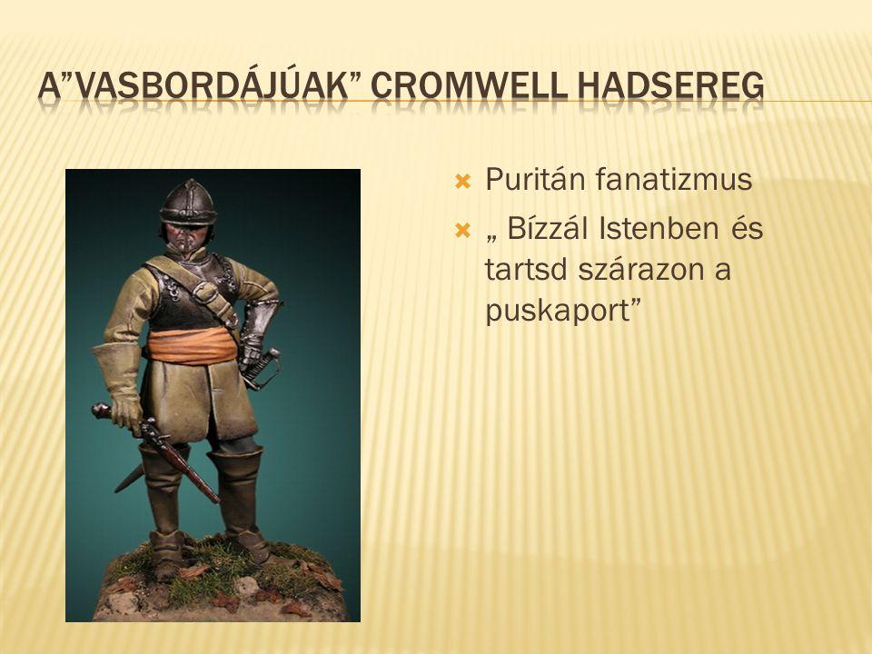A vasbordájúak Cromwell hadsereg