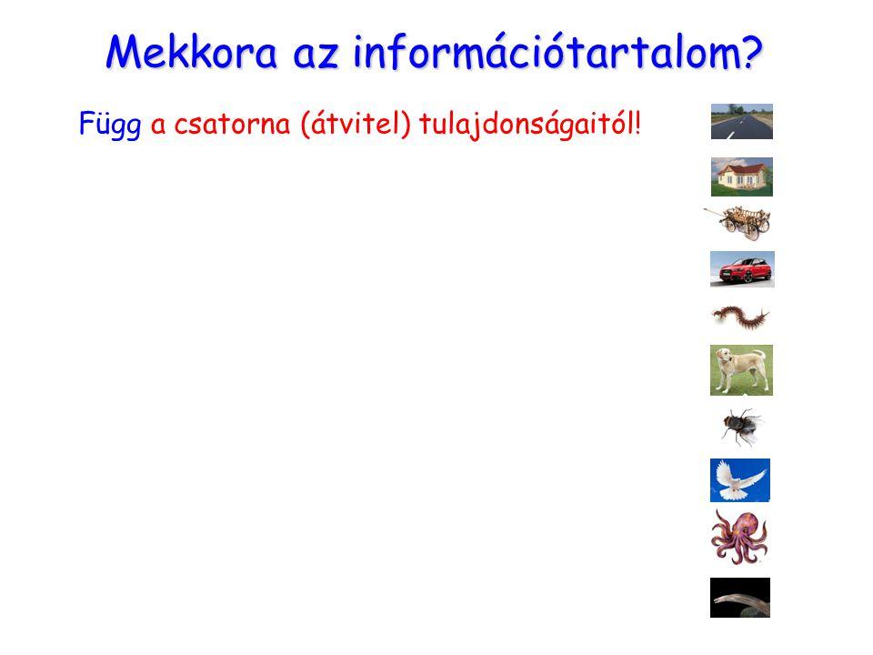 Mekkora az információtartalom