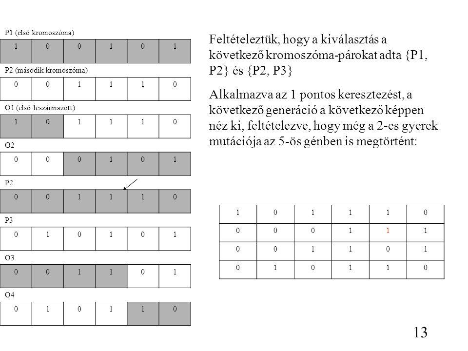 P1 (első kromoszóma) Feltételeztük, hogy a kiválasztás a következő kromoszóma-párokat adta {P1, P2} és {P2, P3}