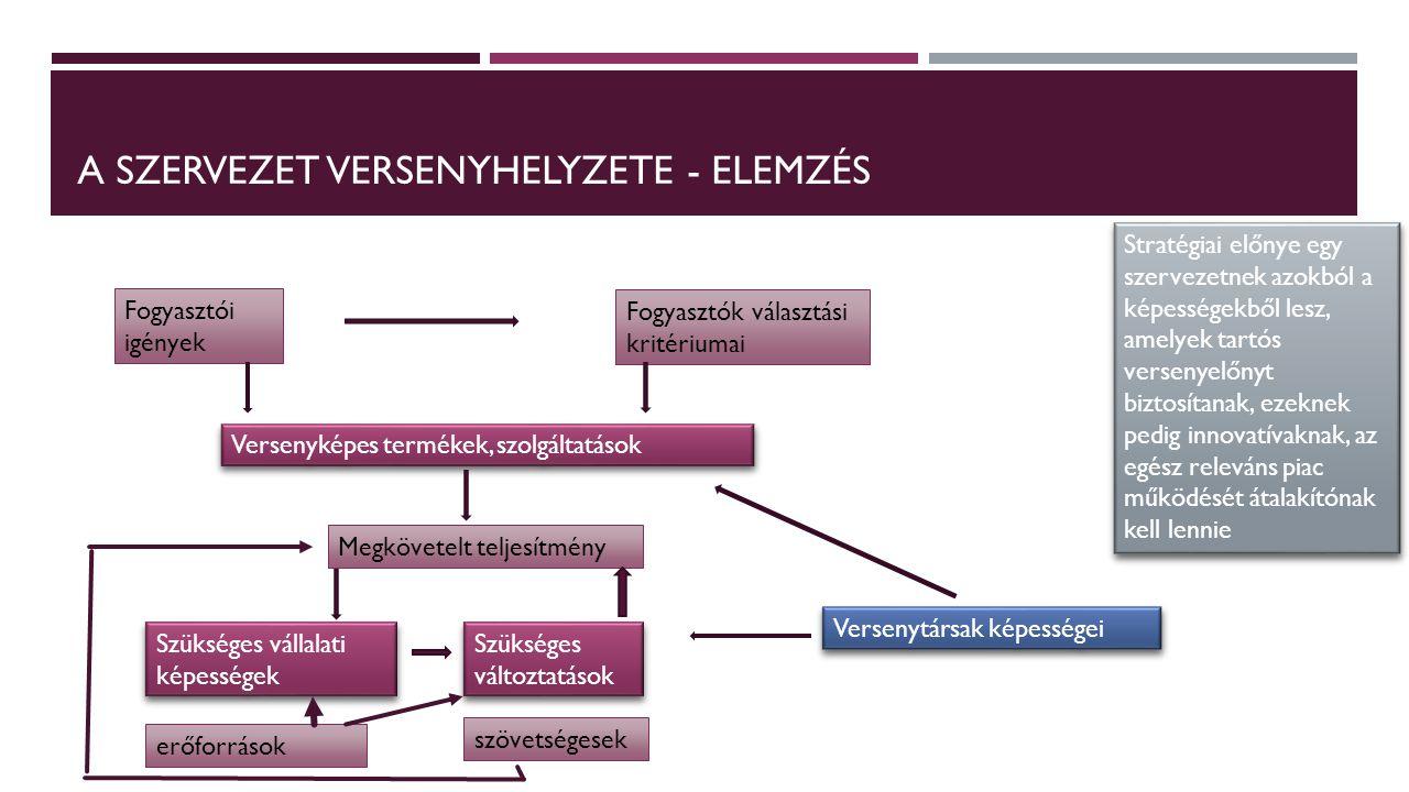 A szervezet versenyhelyzete - elemzés