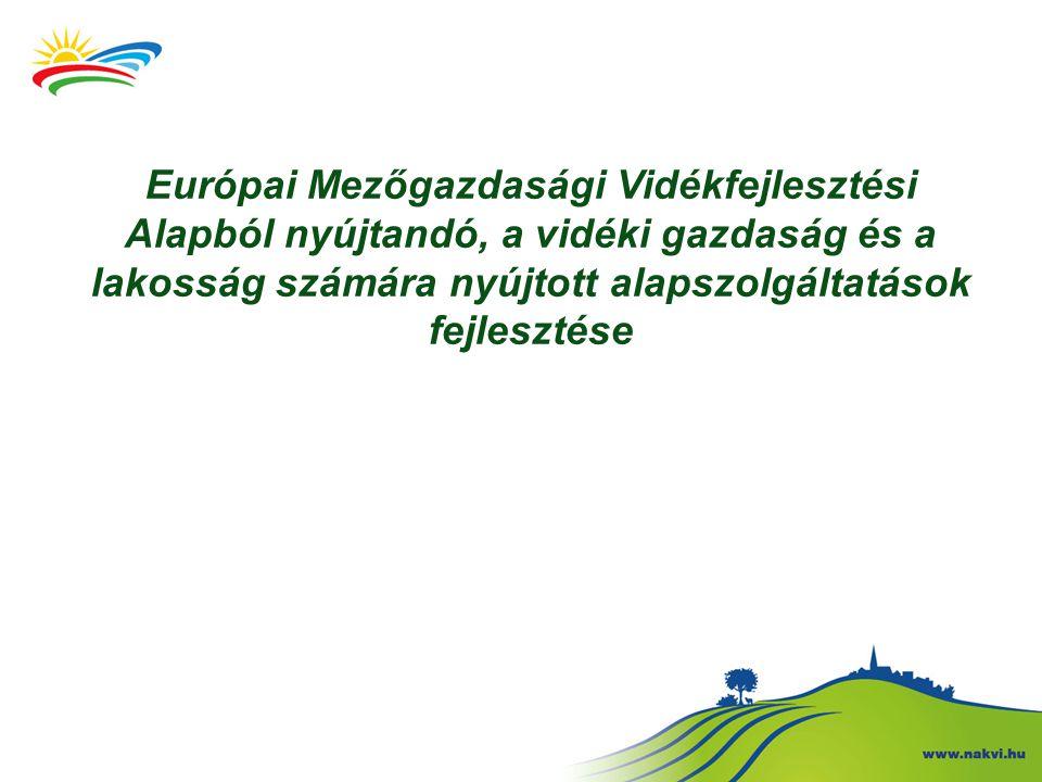 Európai Mezőgazdasági Vidékfejlesztési Alapból nyújtandó, a vidéki gazdaság és a lakosság számára nyújtott alapszolgáltatások fejlesztése