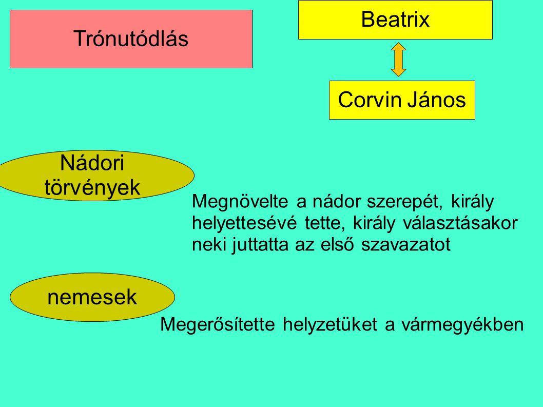 Beatrix Trónutódlás Corvin János Nádori törvények nemesek
