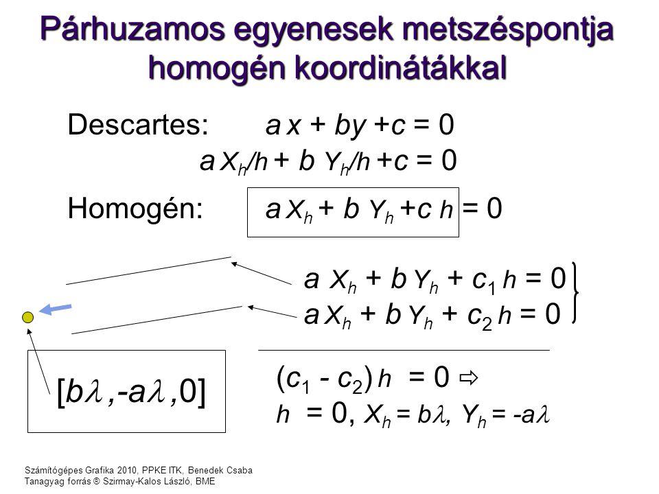 Párhuzamos egyenesek metszéspontja homogén koordinátákkal