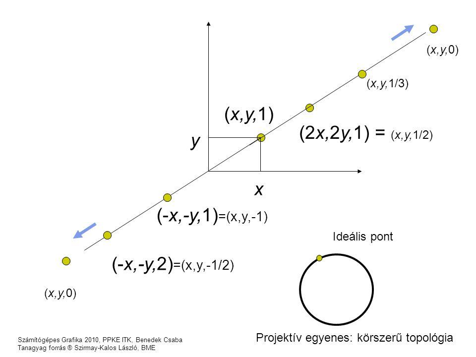 (x,y,1) (2x,2y,1) = (x,y,1/2) y x (-x,-y,1)=(x,y,-1)