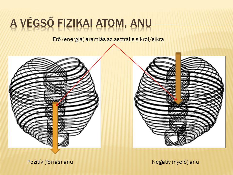 A Végső Fizikai Atom, Anu