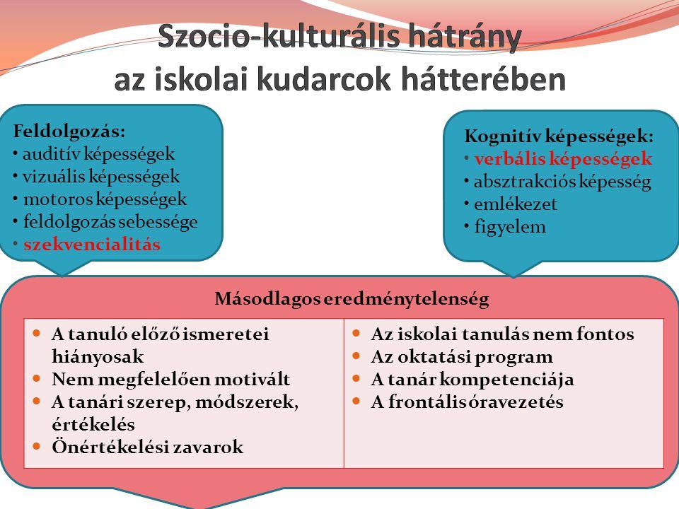 Szocio-kulturális hátrány az iskolai kudarcok hátterében