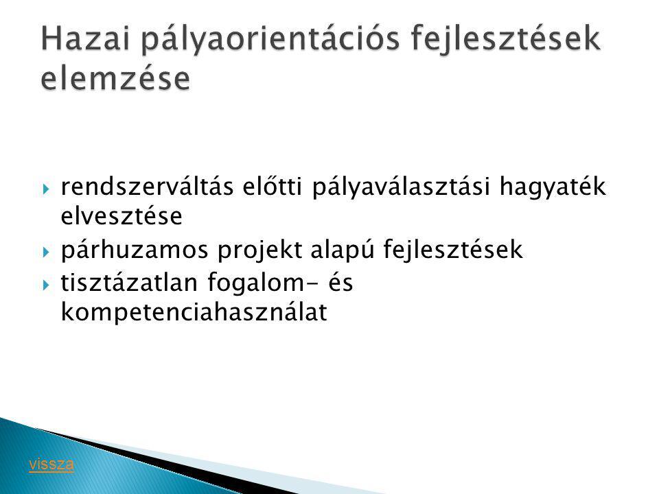 Hazai pályaorientációs fejlesztések elemzése