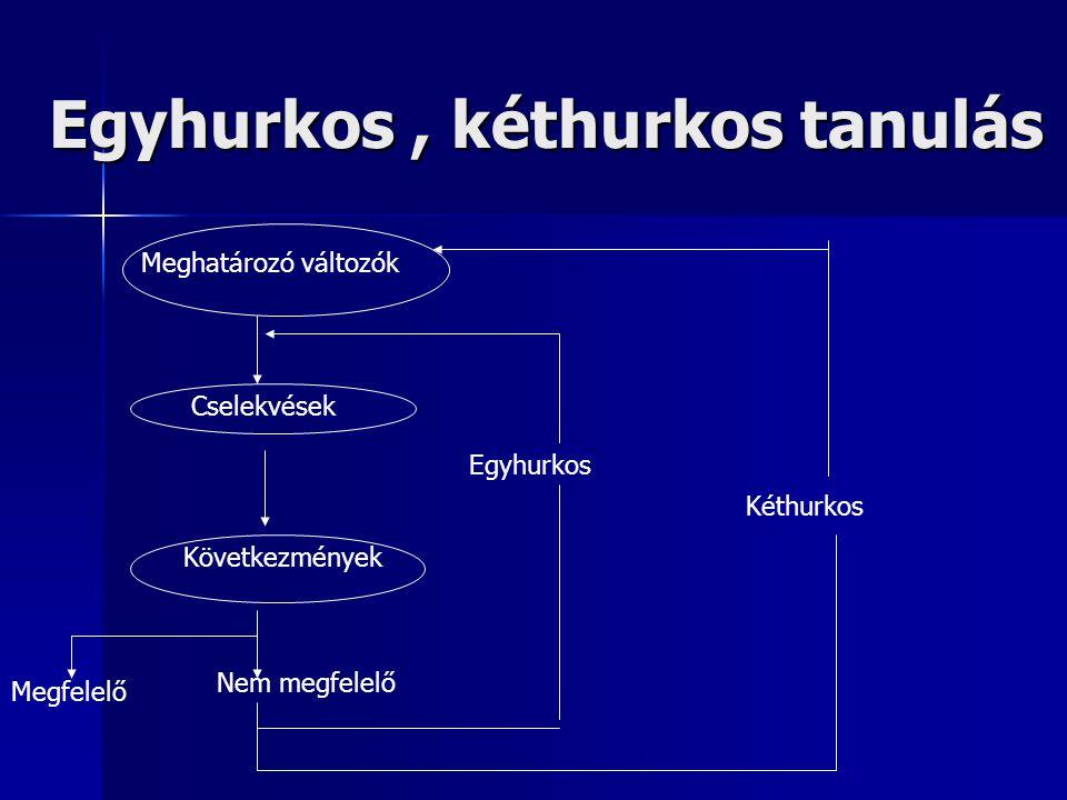 Egyhurkos , kéthurkos tanulás