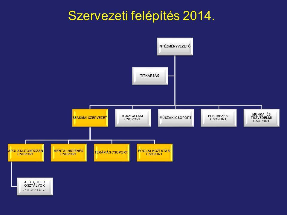 Szervezeti felépítés 2014. INTÉZMÉNYVEZETŐ SZAKMAI SZERVEZET