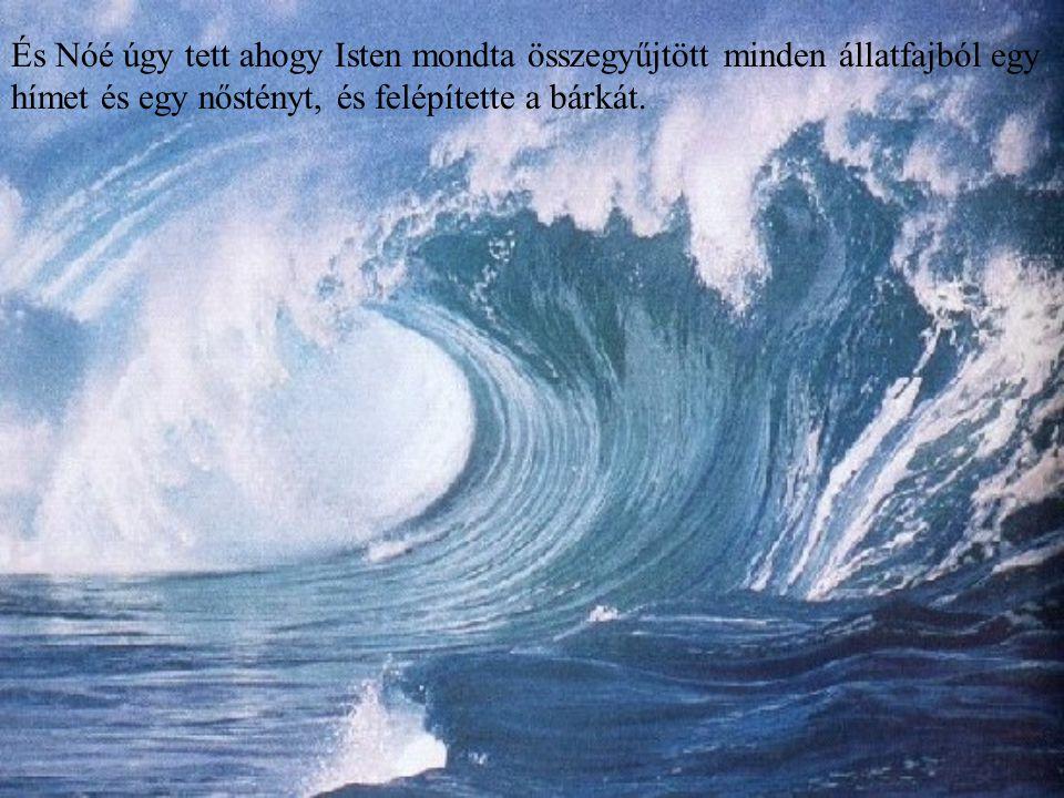 És Nóé úgy tett ahogy Isten mondta összegyűjtött minden állatfajból egy hímet és egy nőstényt, és felépítette a bárkát.