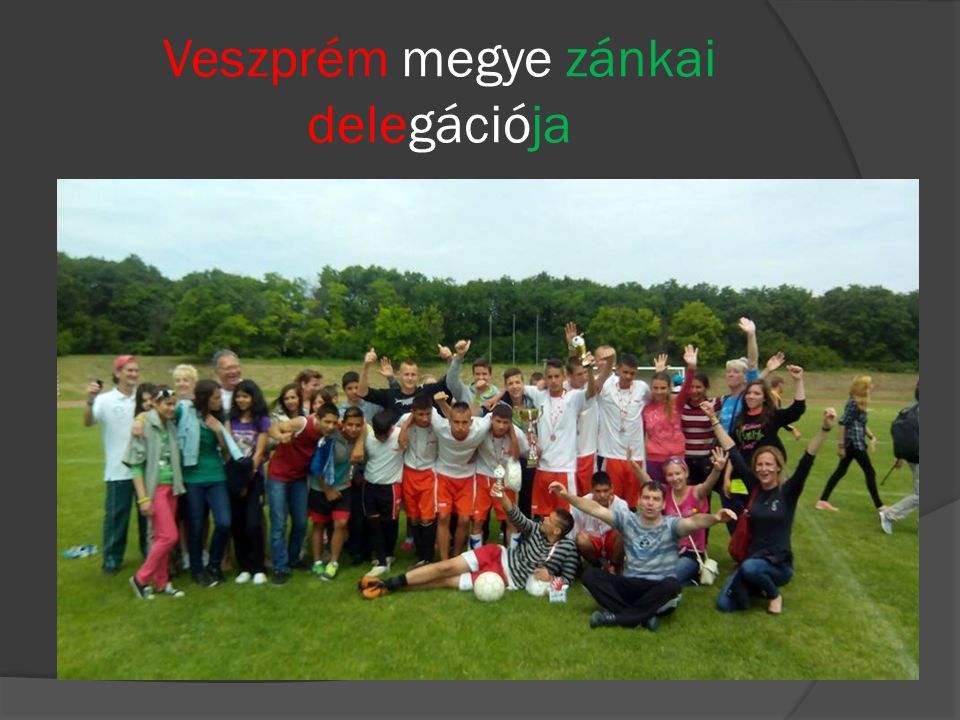 Veszprém megye zánkai delegációja