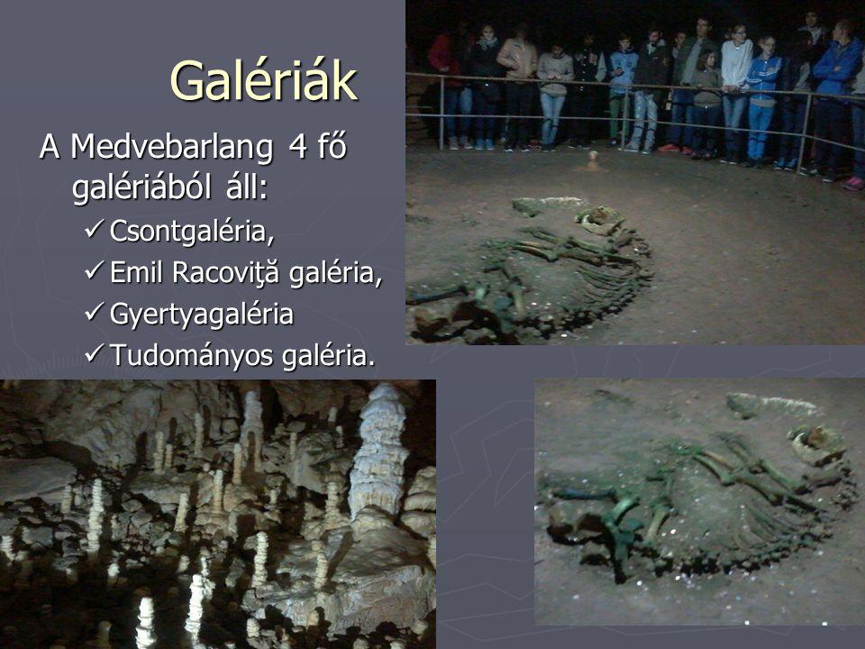 Galériák A Medvebarlang 4 fő galériából áll: Csontgaléria,