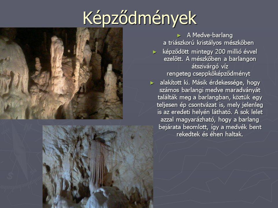 A Medve-barlang a triászkorú kristályos mészkőben
