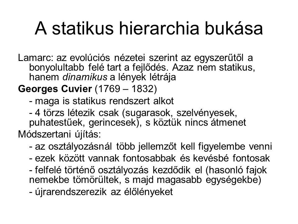 A statikus hierarchia bukása