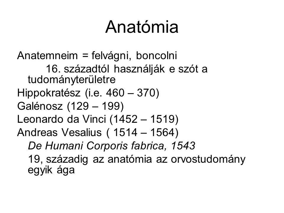 Anatómia Anatemneim = felvágni, boncolni