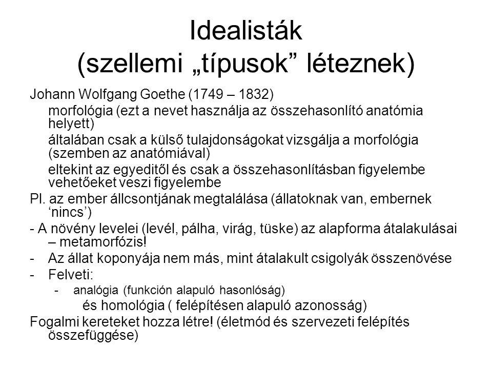"""Idealisták (szellemi """"típusok léteznek)"""