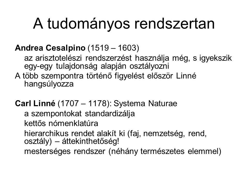 A tudományos rendszertan