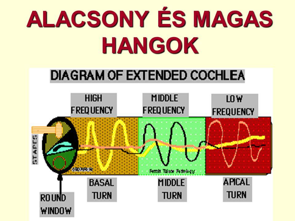 ALACSONY ÉS MAGAS HANGOK