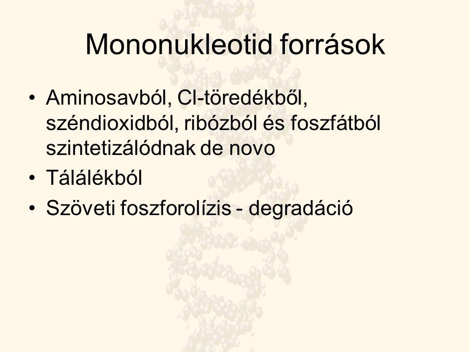 Mononukleotid források