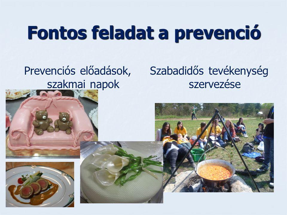 Fontos feladat a prevenció