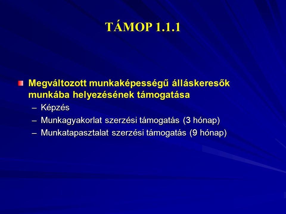 TÁMOP 1.1.1 Megváltozott munkaképességű álláskeresők munkába helyezésének támogatása. Képzés. Munkagyakorlat szerzési támogatás (3 hónap)