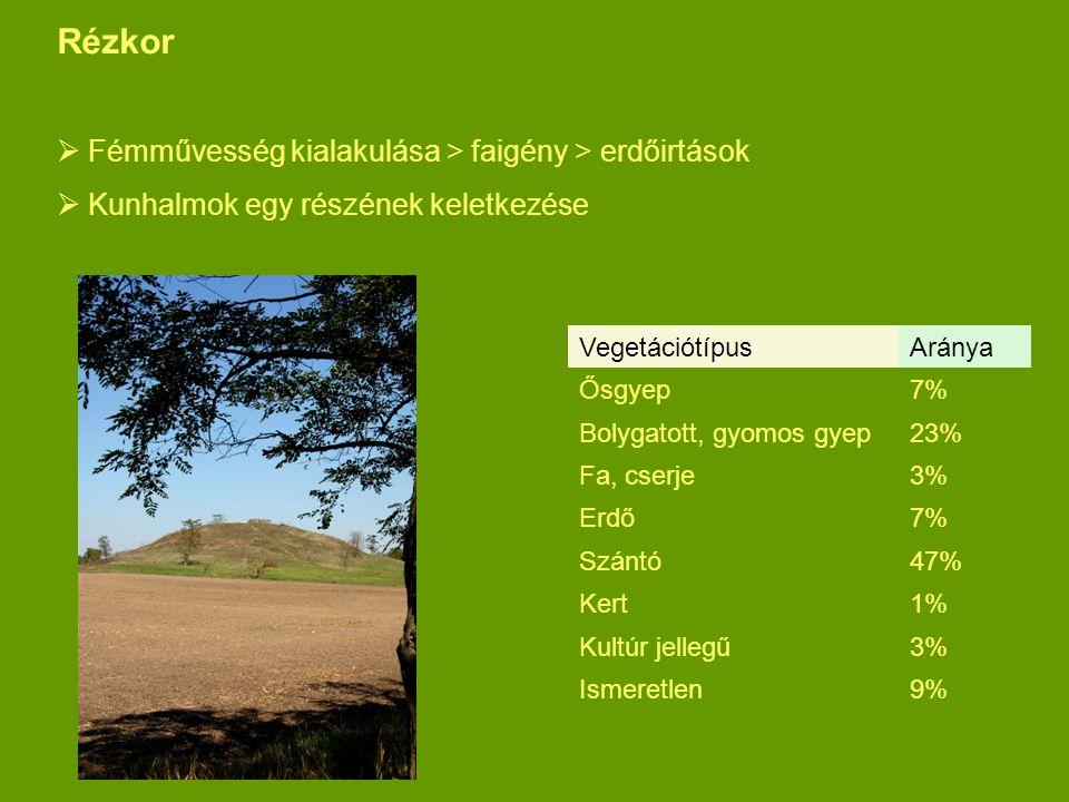 Rézkor Fémművesség kialakulása > faigény > erdőirtások