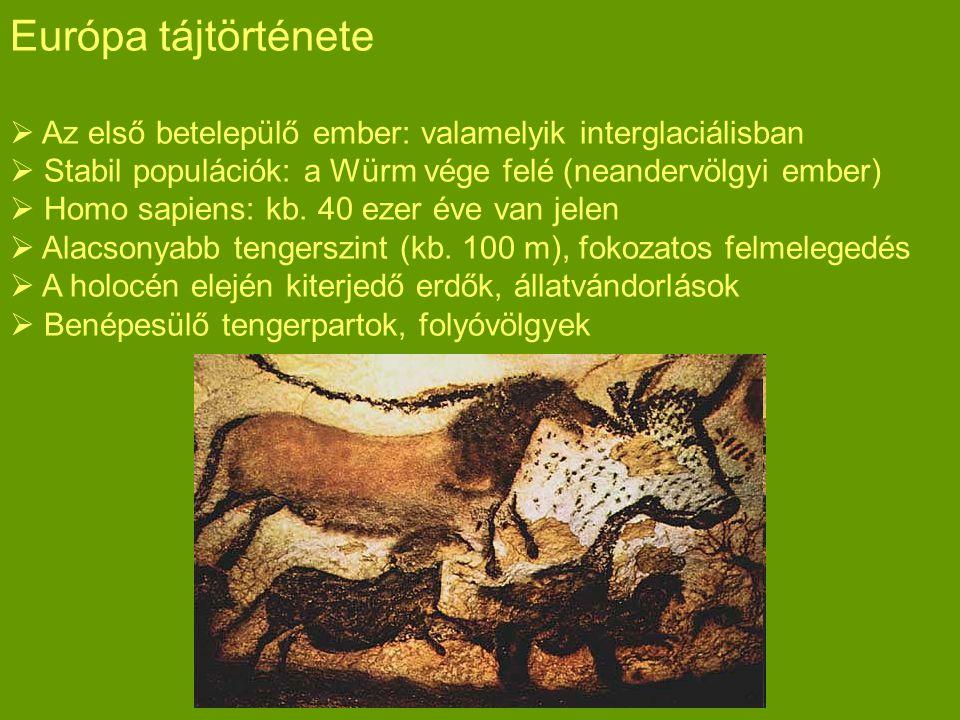 Európa tájtörténete Az első betelepülő ember: valamelyik interglaciálisban. Stabil populációk: a Würm vége felé (neandervölgyi ember)