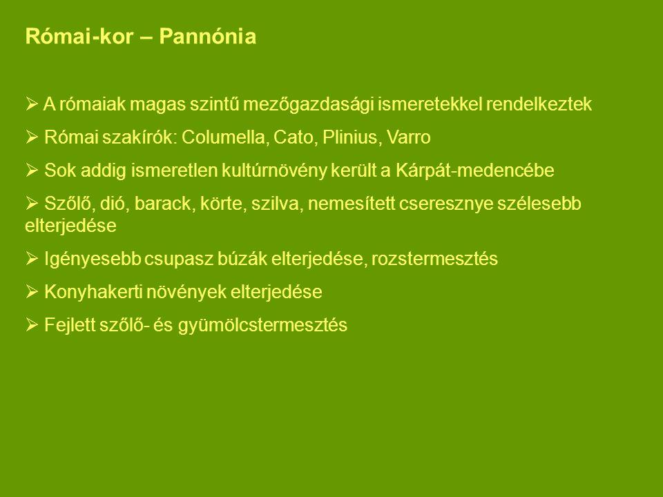 Római-kor – Pannónia A rómaiak magas szintű mezőgazdasági ismeretekkel rendelkeztek. Római szakírók: Columella, Cato, Plinius, Varro.