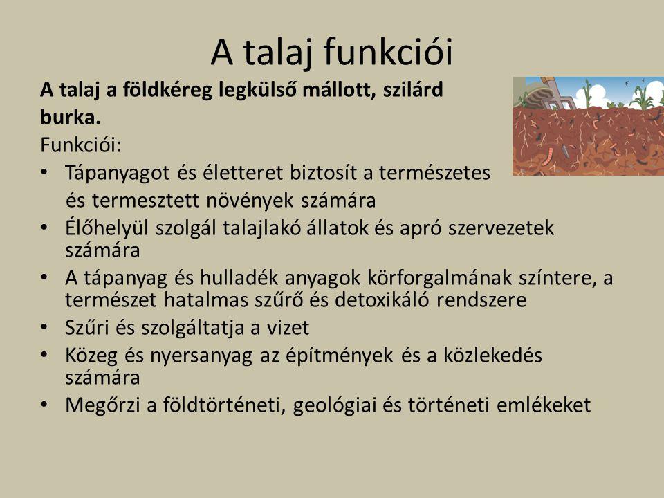 A talaj funkciói A talaj a földkéreg legkülső mállott, szilárd burka.