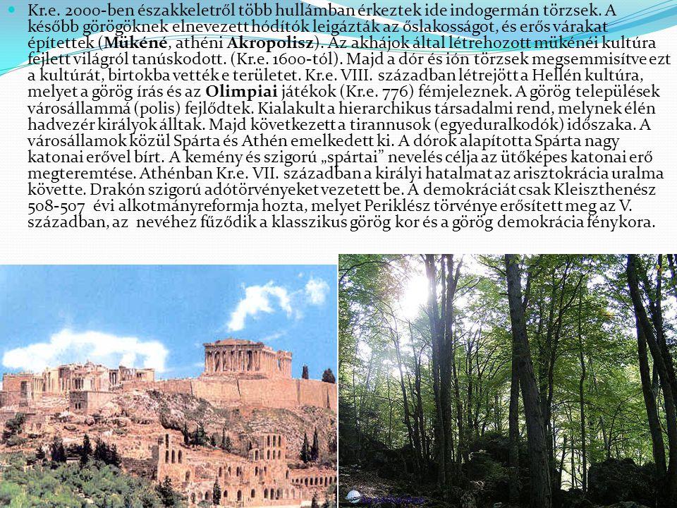 Kr.e. 2000-ben északkeletről több hullámban érkeztek ide indogermán törzsek.