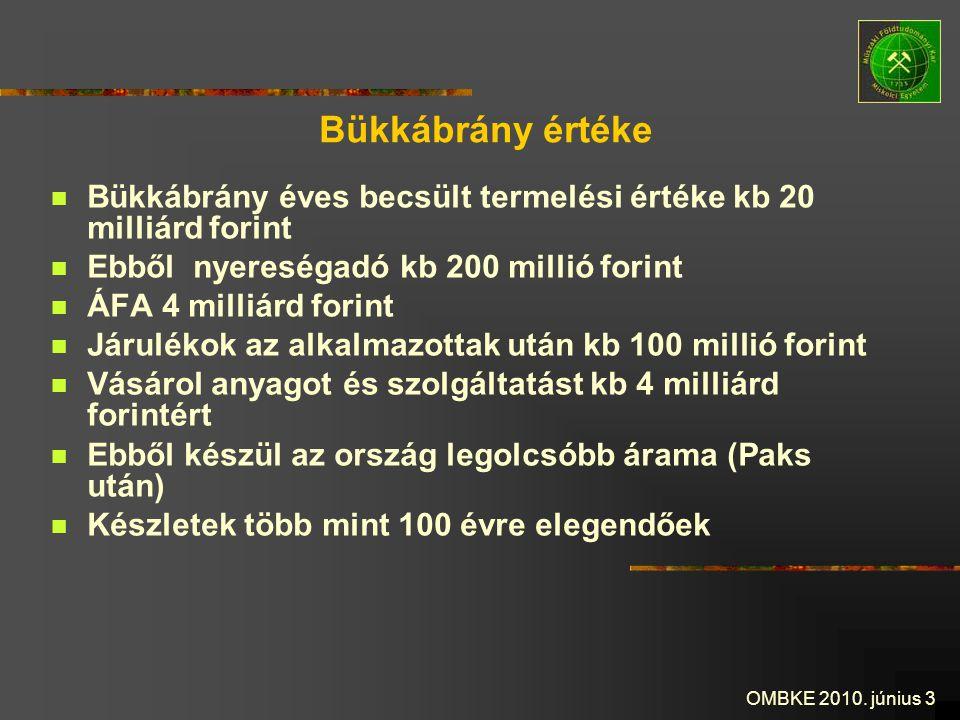 Bükkábrány értéke Bükkábrány éves becsült termelési értéke kb 20 milliárd forint. Ebből nyereségadó kb 200 millió forint.