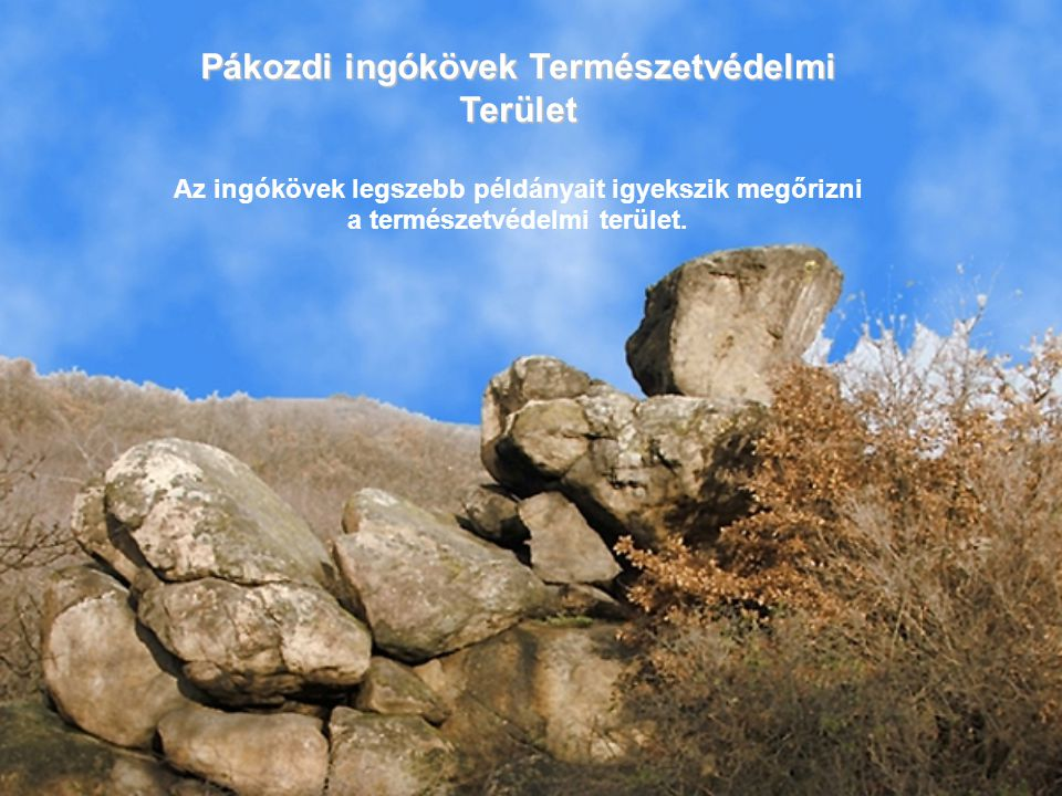 Pákozdi ingókövek Természetvédelmi Terület