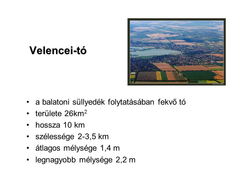 Velencei-tó a balatoni süllyedék folytatásában fekvő tó területe 26km2
