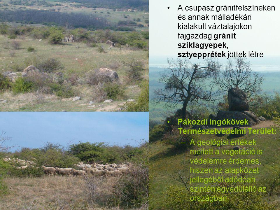 A csupasz gránitfelszíneken és annak málladékán kialakult váztalajokon fajgazdag gránit sziklagyepek, sztyepprétek jöttek létre