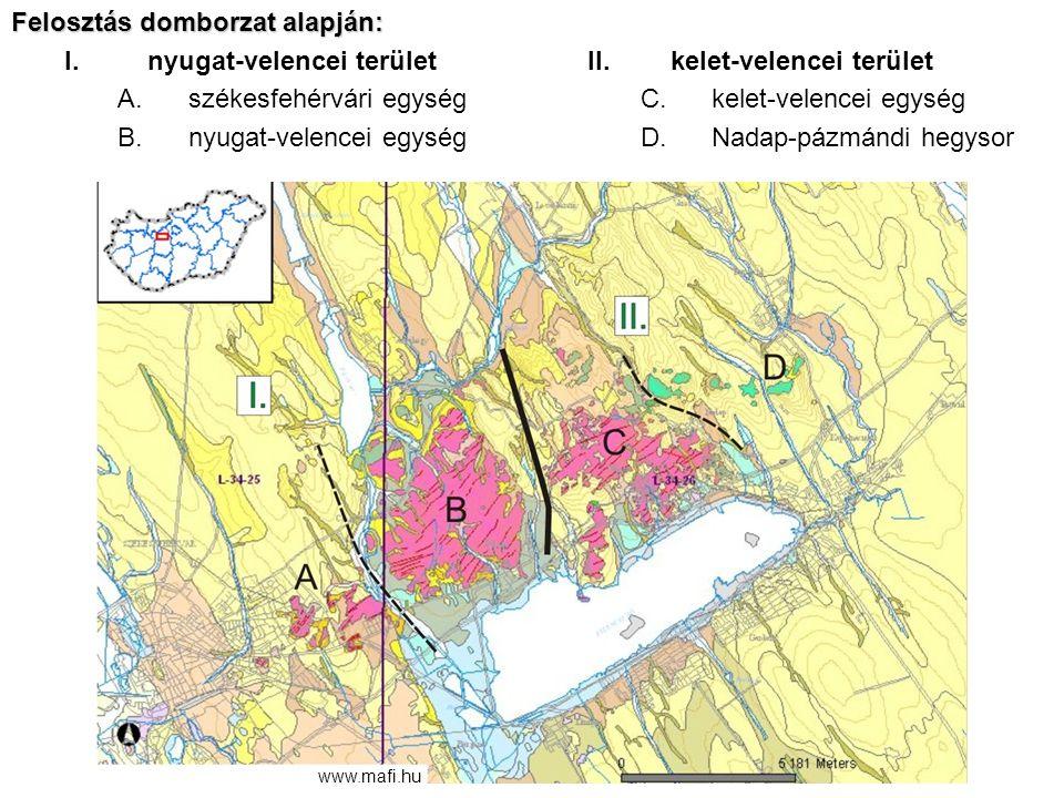 Felosztás domborzat alapján: nyugat-velencei terület